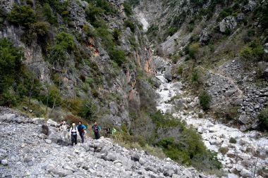 2407 Mountain Activities
